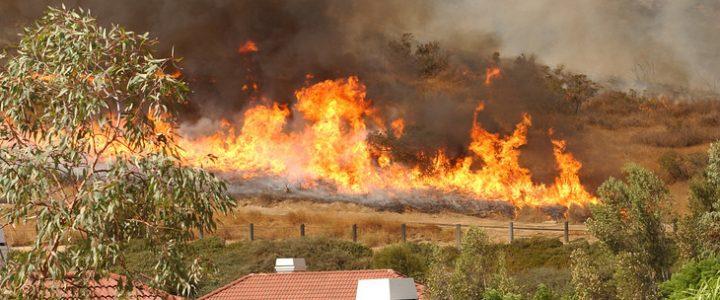 President Trump will Visit California's Deadliest Fire Victims