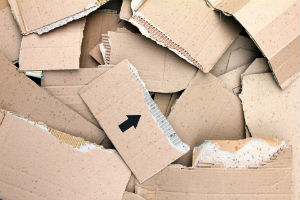 Who is Responsible for Damaged Cargo?