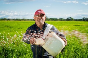 agriculture insurnace