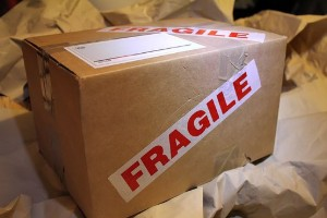 package delivery insurance